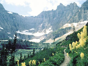 photo of glacier national park, thin snow in the background