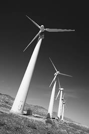 photo of modern windmills