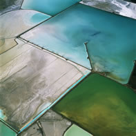 aerial photo of diked wetlands