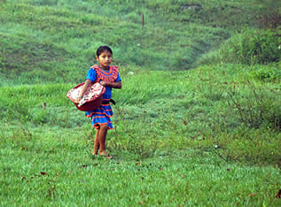 photo of a girl carrying a package in a field