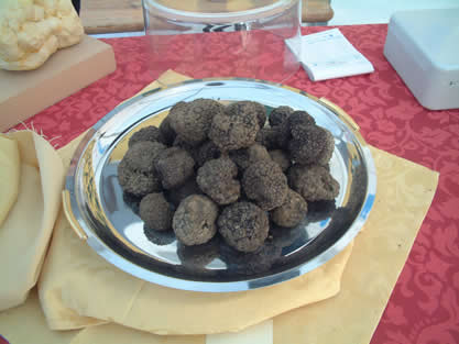 photo of a silver plate containing black truffles