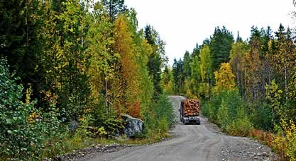 photo of a fully-loaded logging truck passing through a forest