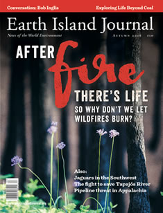 cover, Autumn 2016 Earth Island Journal