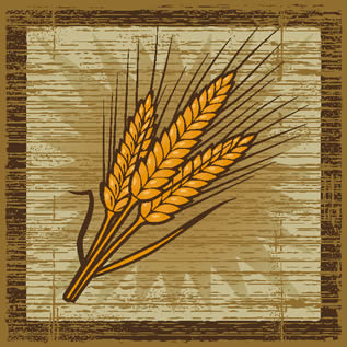 woodcut-style artwork depicting a stalk of wheat