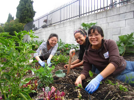 photo of cheerful young people working in a garden