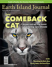 Spring 2014 Earth Island Journal cover thumbnail