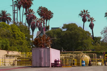 photo of oil drilling machinery behind a screen of palms and eucalyptus