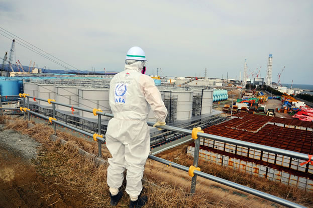 photo of a persion in protective clothing looking out over a powerplant by the sea