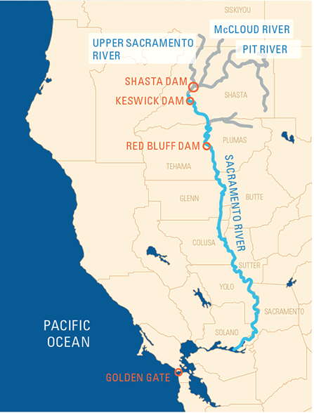 graphic map depicting the river and the dams on it