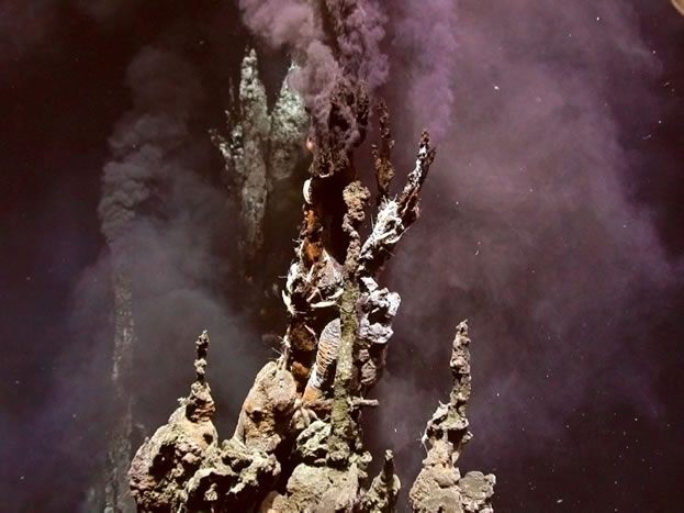 photo of a deep-ocean thermal vent
