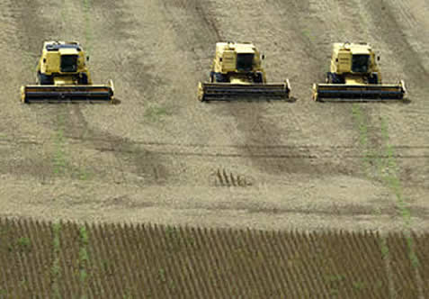 photo of combine harvesters in a large field