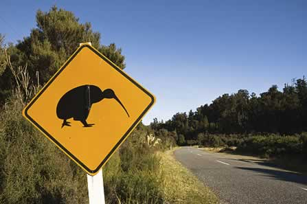 photo of a Kiwi Crossing road sign