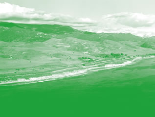 photo of a landscape tinted green