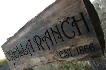 wooden sign in pasture, words Orella Ranch