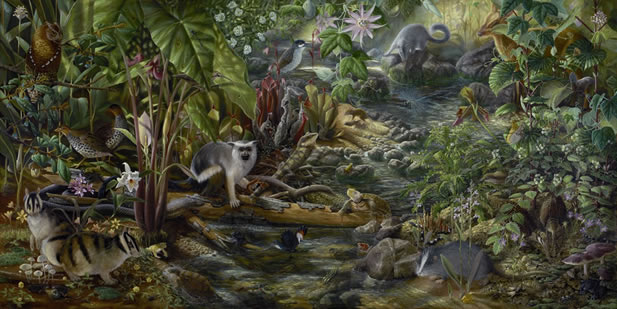 image depicting plants and animals in the understory of a forest