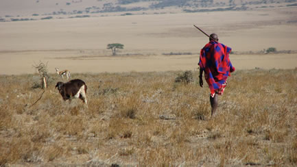 photo of a man walking in an African dryland