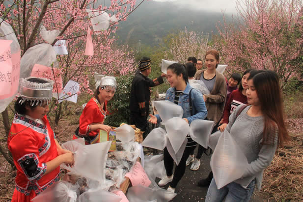 photo of an outdoor scene with many plastic bags