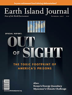 cover, Summer 2017 Earth Island Journal