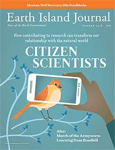 cover, Winter 2018 Earth Island Journal