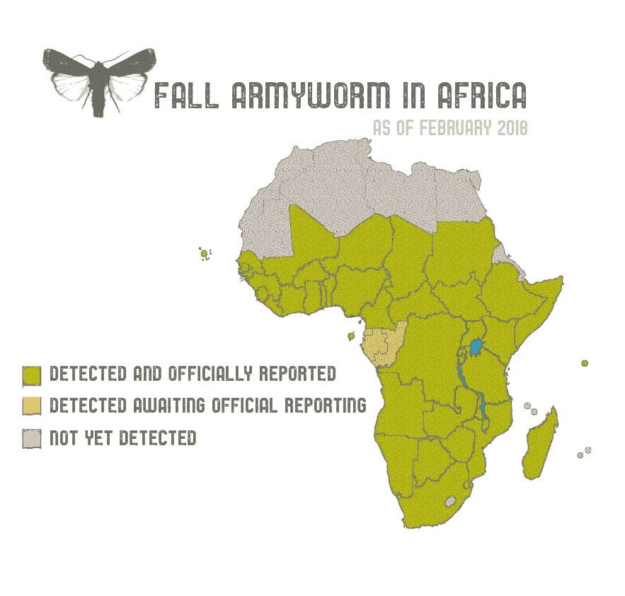 graphic map showing the continent of Africa and depicting the spread of Fall Armyworm
