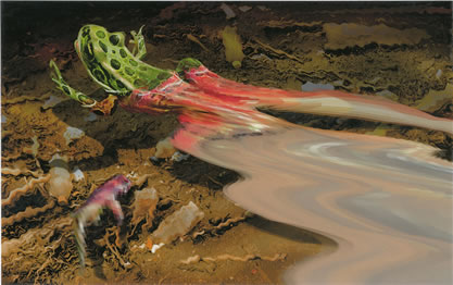 painting of a scene by a creed, with a frog dissolving into the water