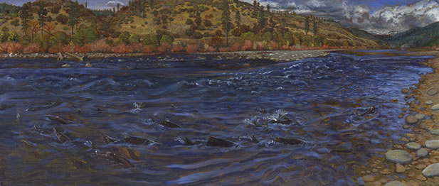 painting of a wild river flowing out of high mountains through a woodland, there are many salmon