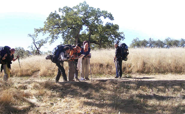photo of backpacking young people looking at a map outdoors