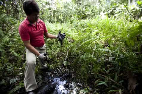 photo fo a man in a forest, gloved hands in a pool of oily, tarry liquid