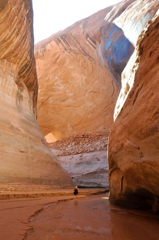 photo of a desert slot canyon, a person walking in the water at the bottom