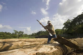 photo of a man using an adze on timber with a tropical forest in the background