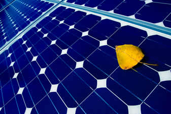 photo of a solar panel, a leaf resting on it