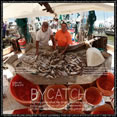 artwork thumbnail titled Bycatch