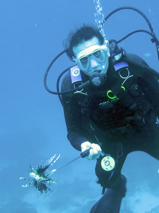 photo of a diver in clear water, spear in hand, lionfish skewered there