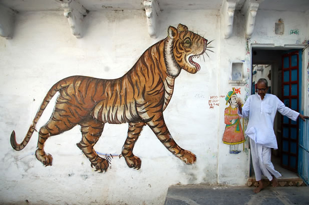 photo of a man walking through a doorway, artwork depicting a tiger on the wall nearby