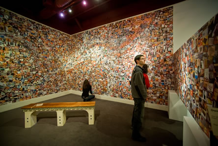 photo of an art installation, photos of refuse covering the walls