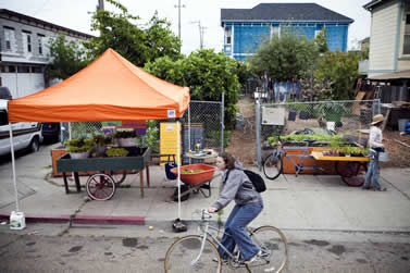 photo of a farmers market on an urban street, cyclist in foreground