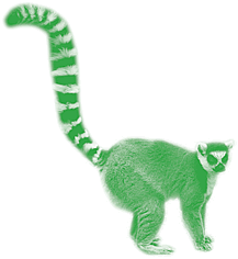 green tinted photo of a lemur