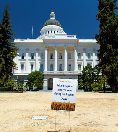 photo of a capitol building with a sign on a dead lawn