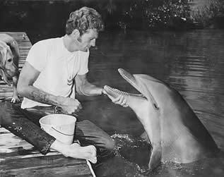 photo of a man interacting with a dolphin