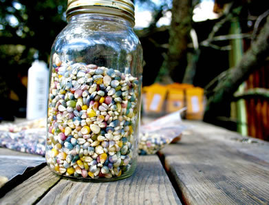 photo of a jar of multi-hued corn kernels