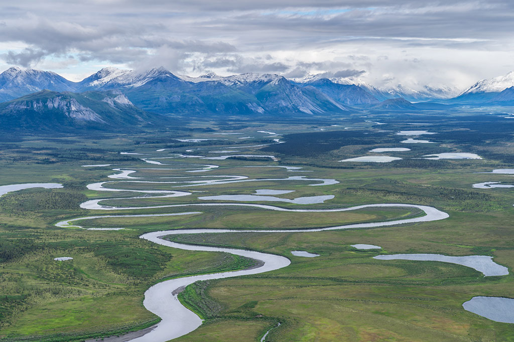 Only three parties showed up for the first-ever oil lease sale in the Arctic National Wildlife Refuge. One of them was the state of Alaska itself. Photo by Alexis Bonogofsky for USFWS.