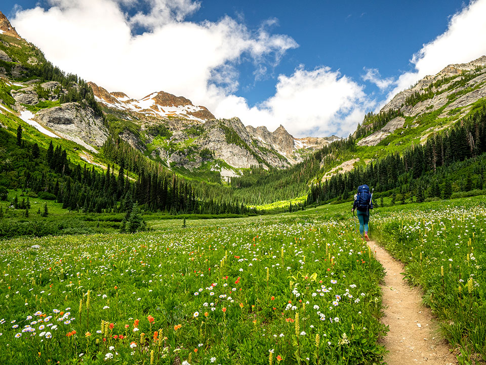 photo of a backpacker in a mountain meadow