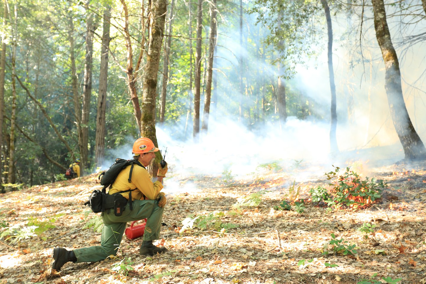 Photo of wildfire training