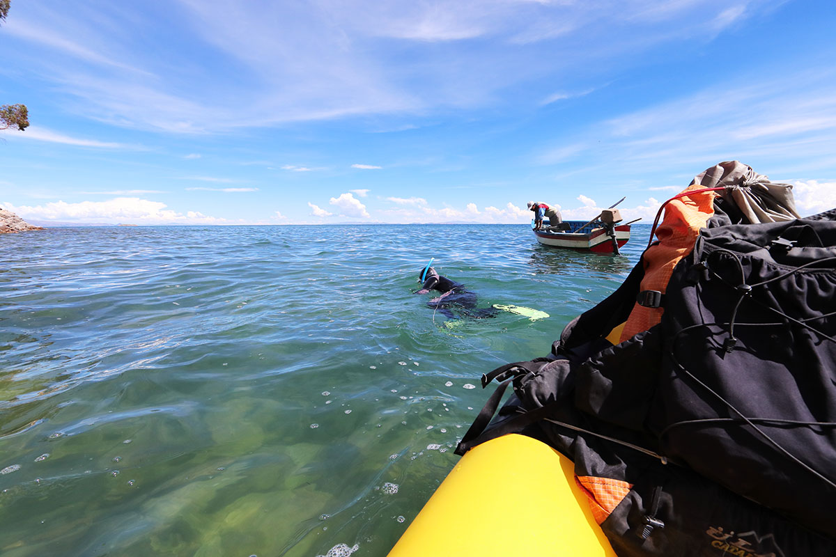Snorkeling for frogs can be tricky work in Lake Titicaca's cold and sometimes muddy waters. Still, researchers are gathering valuable information about how many frogs live in the lake, their behavior, and their preferred habitat. Photo Erin Mckittrick