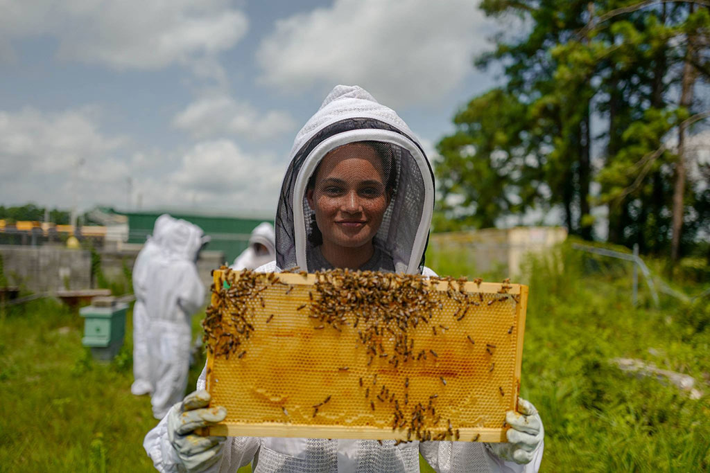 photo of a young beekeeper