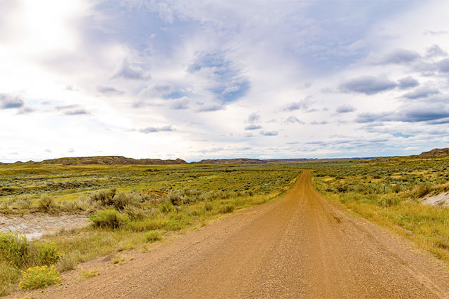 photo of a dirt road in a landscape