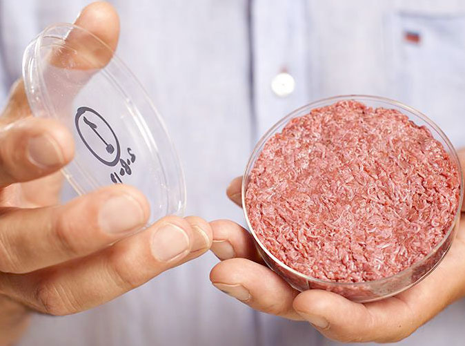 photo of a petri dish, filled with hamburger