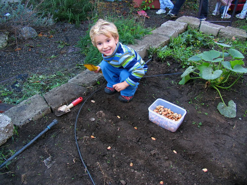 photo of a child in a garden