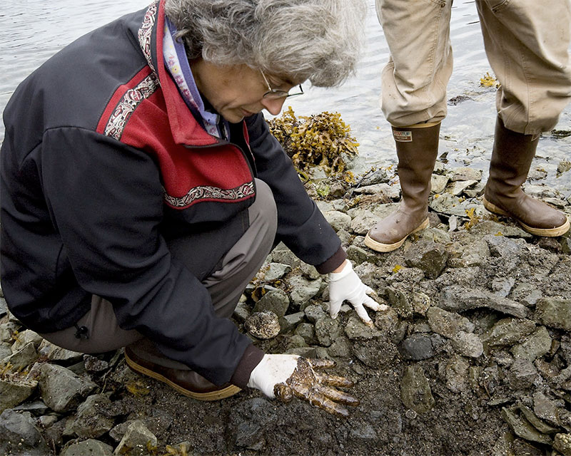 photo of a woman examining spilled oil on a beach