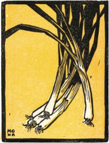 woodcut artwork of leeks